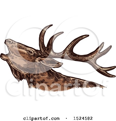 Clipart of a Elk in Profile, in Sketched Style - Royalty Free Vector Illustration by Vector Tradition SM