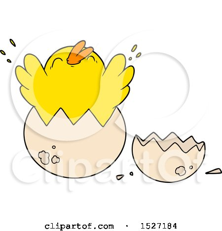 Cartoon Chick Hatching from Egg Posters, Art Prints