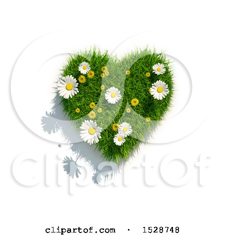 Clipart of a 3d Green Grass, Dandelion Flower and Daisy Heart, on a White Background - Royalty Free Illustration by chrisroll