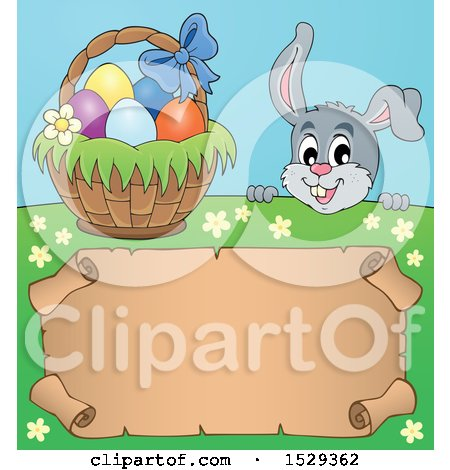 Clipart of a Gray Easter Bunny Rabbit over a Blank Parchment Scroll - Royalty Free Vector Illustration by visekart