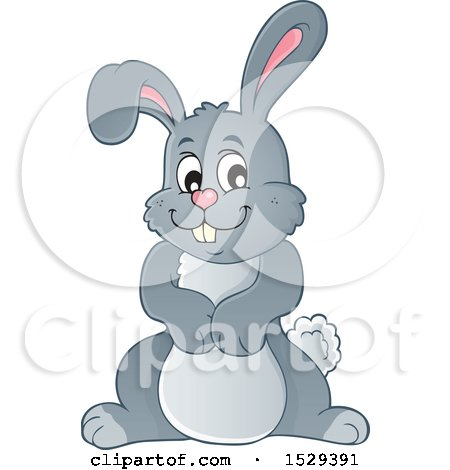 Clipart of a Gray Bunny Rabbit - Royalty Free Vector Illustration by visekart
