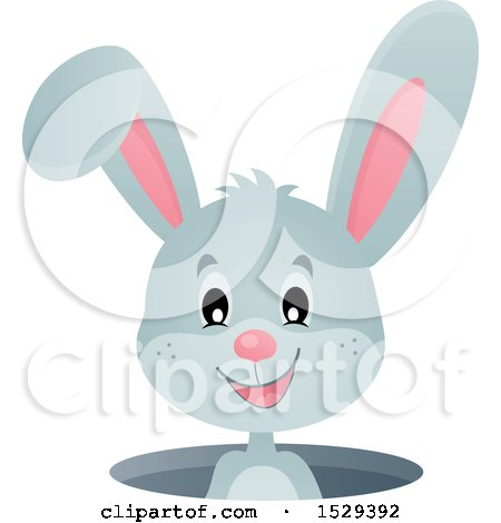 Clipart of a Gray Bunny Rabbit Emerging from a Hole - Royalty Free Vector Illustration by visekart