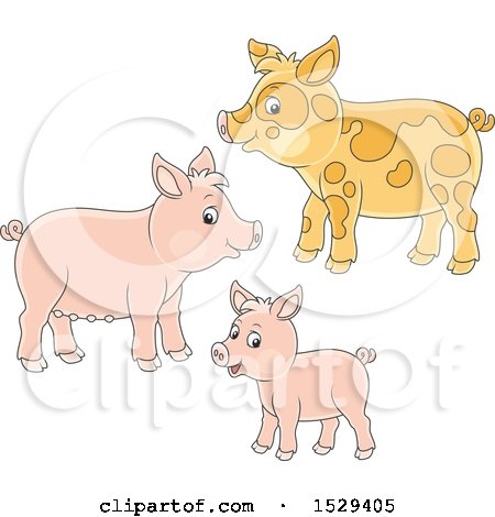 Clipart of a Cute Pig Family - Royalty Free Vector Illustration by Alex Bannykh