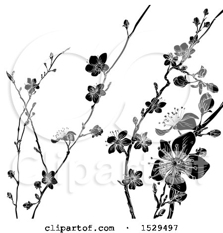 Clipart of a Black and White Cherry Blossom Branches Background - Royalty Free Vector Illustration by AtStockIllustration