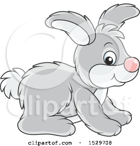 Clipart of a Cute Gray Bunny Rabbit - Royalty Free Vector Illustration by Alex Bannykh