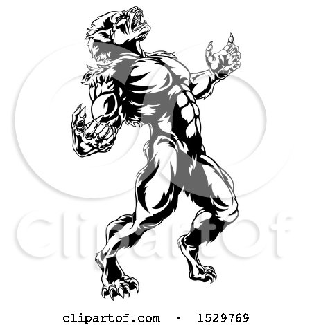 Clipart of a Black and White Werewolf Beast Howling and Transforming - Royalty Free Vector Illustration by AtStockIllustration