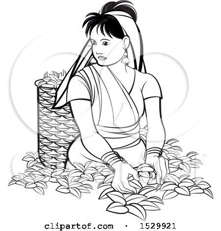 Clipart of a Black and White Sri Lankan Woman Plucking Tea Leaves - Royalty Free Vector Illustration by Lal Perera