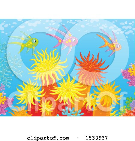 Clipart of a Group of Colorful Fish Swimming over Corals and Sea Anemones - Royalty Free Vector Illustration by Alex Bannykh