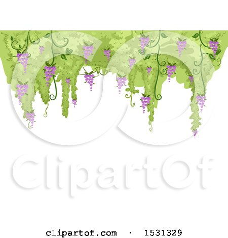 Clipart of a Background with a Border of Flowering Wisteria - Royalty Free Vector Illustration by BNP Design Studio