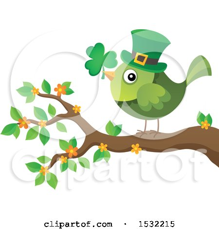 Clipart of a Green St Patricks Day Bird with a Clover and Top Hat on a Branch - Royalty Free Vector Illustration by visekart