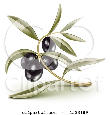 Clipart of a Blck Olive Branch and Leaves - Royalty Free Vector Illustration by Oligo