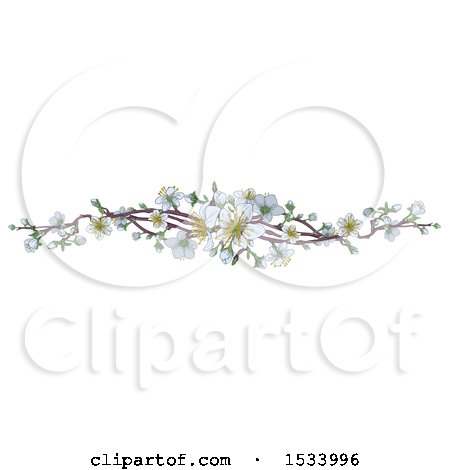 Clipart of a Border of White Spring Blossoms - Royalty Free Vector Illustration by AtStockIllustration