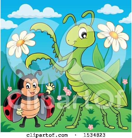 Clipart of a Ladybug and Praying Mantis - Royalty Free Vector Illustration by visekart