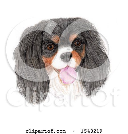 Clipart of a Pencile Art Portrait of a Happy Dog, on a White Background - Royalty Free Illustration by Maria Bell
