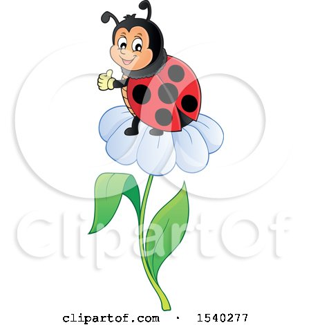 Clipart of a Ladybug on a Daisy Flower - Royalty Free Vector Illustration by visekart