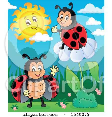 Clipart of Ladybugs - Royalty Free Vector Illustration by visekart