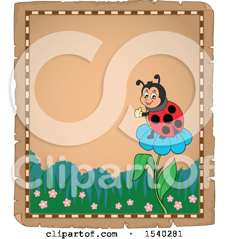Clipart of a Parchment Border of a Ladybug on a Flower - Royalty Free Vector Illustration by visekart
