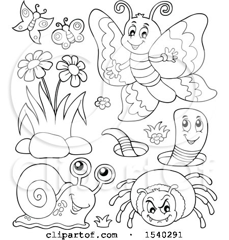 Clipart of a Butterfly, Worm, Spider and Snail - Royalty Free Vector Illustration by visekart