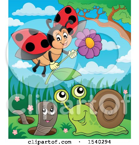 Clipart of a Ladybug, Worm and Snail - Royalty Free Vector Illustration by visekart