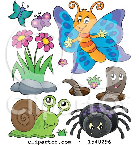 Clipart of a Butterfly, Spider, Worm and Snail - Royalty Free Vector Illustration by visekart