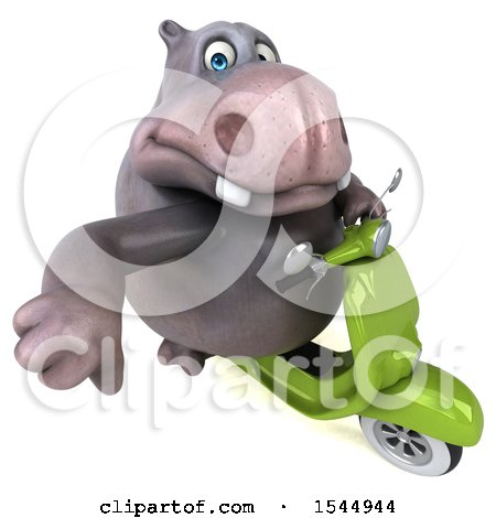 Clipart of a 3d Business Hippo Riding a Scooter, on a White Background - Royalty Free Illustration by Julos