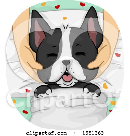 Clipart of a Spoiled Boston Terrier Dog Getting a Massage at a Spa - Royalty Free Vector Illustration by BNP Design Studio