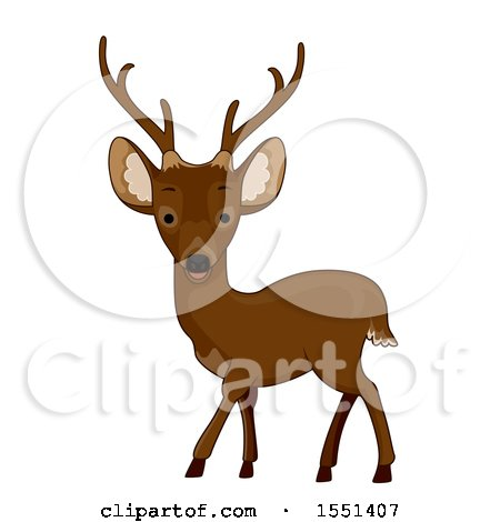 Clipart of a Cute Calamian Deer - Royalty Free Vector Illustration by BNP Design Studio