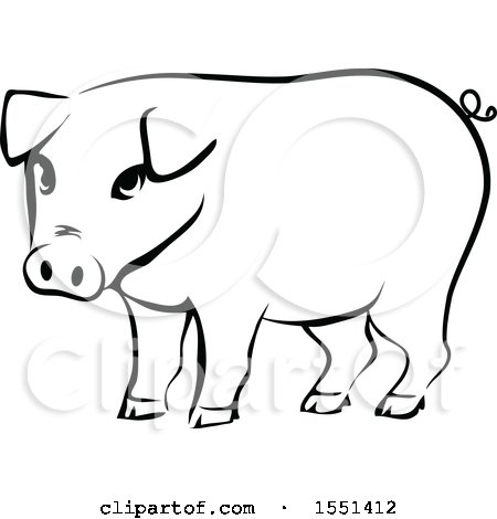 Clipart of a Black and White Pig - Royalty Free Vector Illustration by BNP Design Studio