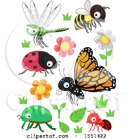 Clipart of Flowers, Plants and Insects - Royalty Free Vector Illustration by BNP Design Studio