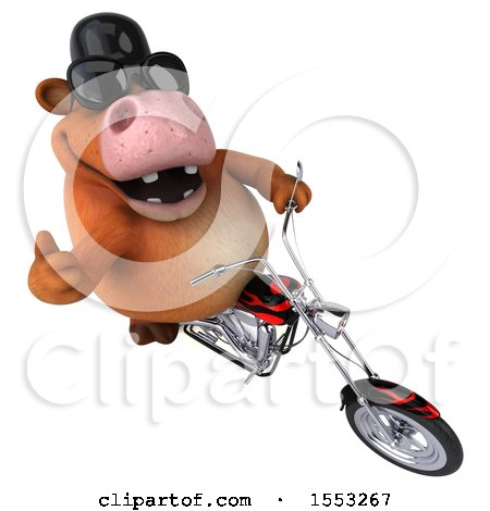 Clipart of a 3d Brown Cow Riding a Chopper Motorcycle, on a White Background - Royalty Free Illustration by Julos