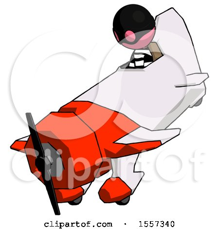 Pink Thief Man in Geebee Stunt Plane Descending View by Leo Blanchette