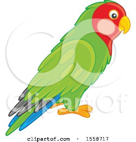 alex bannykh s new royalty free stock illustrations clip art page 1 rh clipartof com love bird tree clipart love bird clipart silhouette