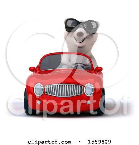 Clipart of a 3d Polar Bear Driving a Convertible, on a White Background - Royalty Free Illustration by Julos