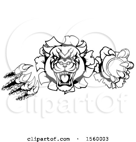 Clipart of a Black and White Panther Mascot Shredding Through a Wall with a Tennis Ball - Royalty Free Vector Illustration by AtStockIllustration