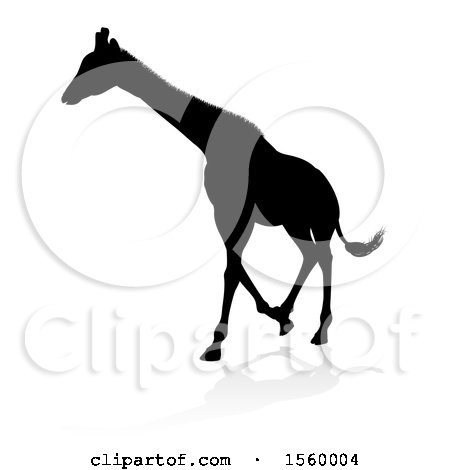 Clipart of a Silhouetted Giraffe, with a Reflection or Shadow - Royalty Free Vector Illustration by AtStockIllustration