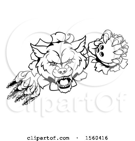 Clipart of a Black and White Ferocious Wolf Slashing Through a Wall with a Bowling Ball - Royalty Free Vector Illustration by AtStockIllustration