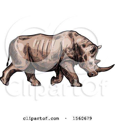 Clipart of a Sketched Rhinoceros Charging - Royalty Free Vector Illustration by Vector Tradition SM