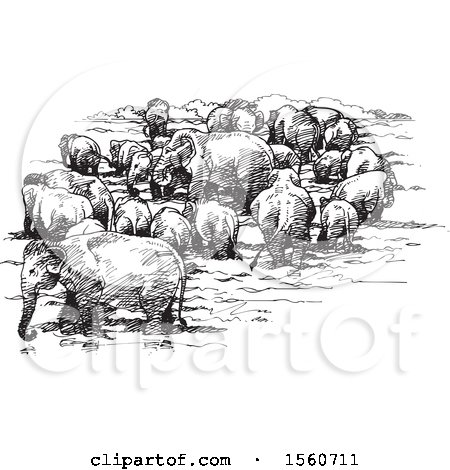 Clipart of a Sketch of a Herd of Elephants - Royalty Free Vector Illustration by Lal Perera