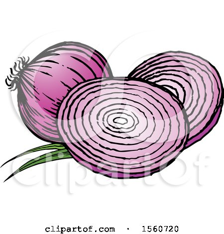 Clipart of Onions - Royalty Free Vector Illustration by Lal Perera