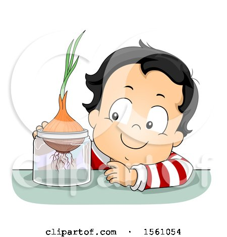 Clipart of a Toddler Boy Growing an Onion - Royalty Free Vector Illustration by BNP Design Studio