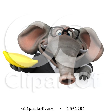 Clipart of a 3d Business Elephant Holding a Banana, on a White Background - Royalty Free Illustration by Julos