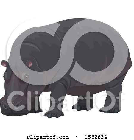 Clipart of a Hippopotamus - Royalty Free Vector Illustration by Vector Tradition SM