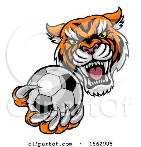 Clipart of a Vicious Tiger Sports Mascot Grabbing a Soccer Ball - Royalty Free Vector Illustration by AtStockIllustration