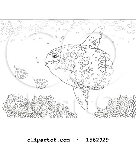 Clipart of a Lineart Moonfish and Others over a Reef - Royalty Free Vector Illustration by Alex Bannykh
