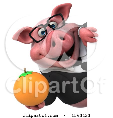 Clipart of a 3d Chubby Business Pig Holding an Orange, on a White Background - Royalty Free Illustration by Julos