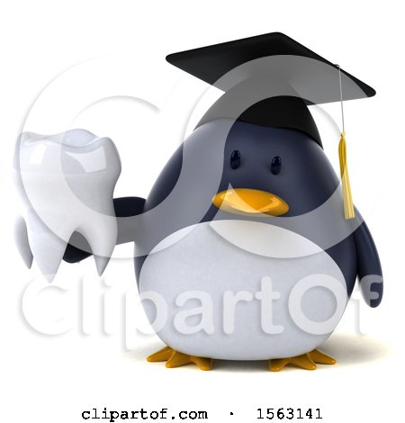 Clipart of a 3d Chubby Penguin Graduate Holding a Tooth, on a White Background - Royalty Free Illustration by Julos