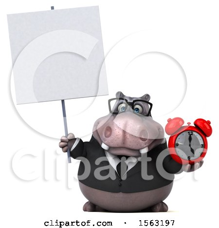 Clipart of a 3d Business Hippo Holding an Alarm Clock, on a White Background - Royalty Free Illustration by Julos