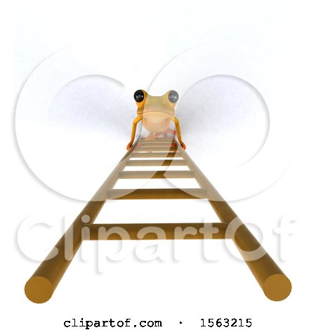 Clipart of a 3d Yellow Frog Looking up a Ladder, on a White Background - Royalty Free Illustration by Julos