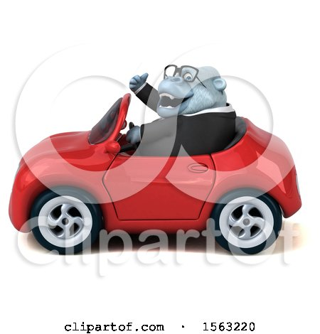 Clipart of a 3d White Business Monkey Yeti Driving a Convertible, on a White Background - Royalty Free Illustration by Julos