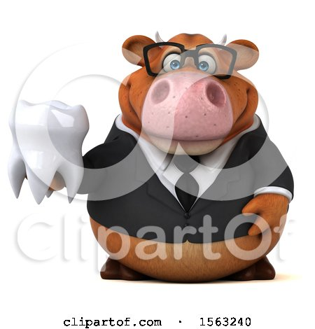 Clipart of a 3d Brown Business Cow Holding a Tooth, on a White Background - Royalty Free Illustration by Julos